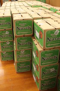 navels_boxes